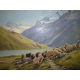 Stenzl: Ovce na alpskom svahu