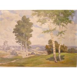Dvořák: Krajina s brezami