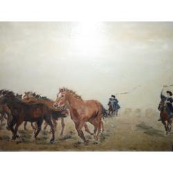 neznámy: Kone na puste